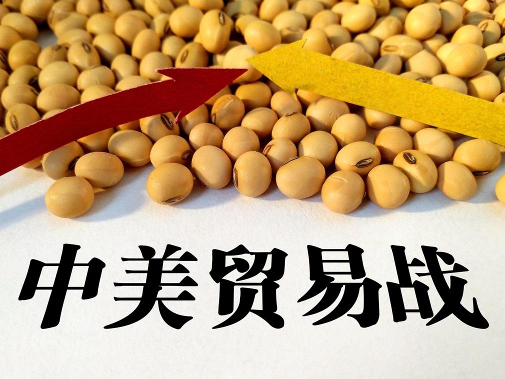 """中国专家谈中美贸易摩擦:对中国""""比较乐观"""""""