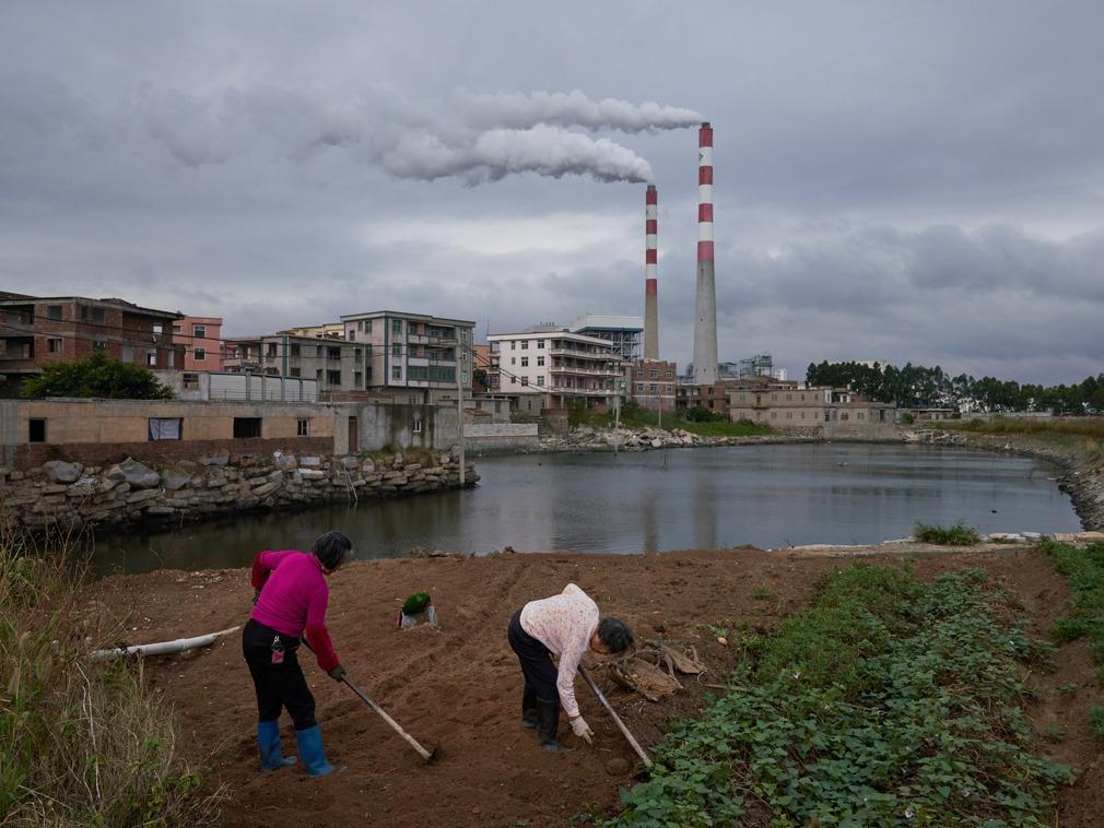 """图片故事:渔生难续 中国养殖业被工业""""围剿""""之后[图集]"""